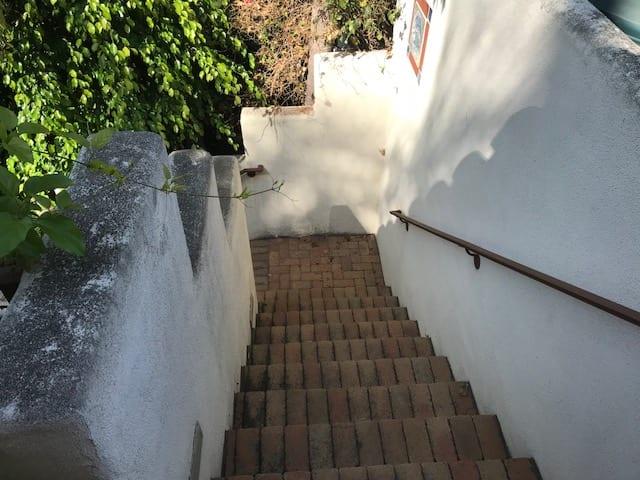 The Villa House Pathway - The Villa House